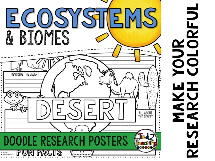 Ecosystems Doodle Posters