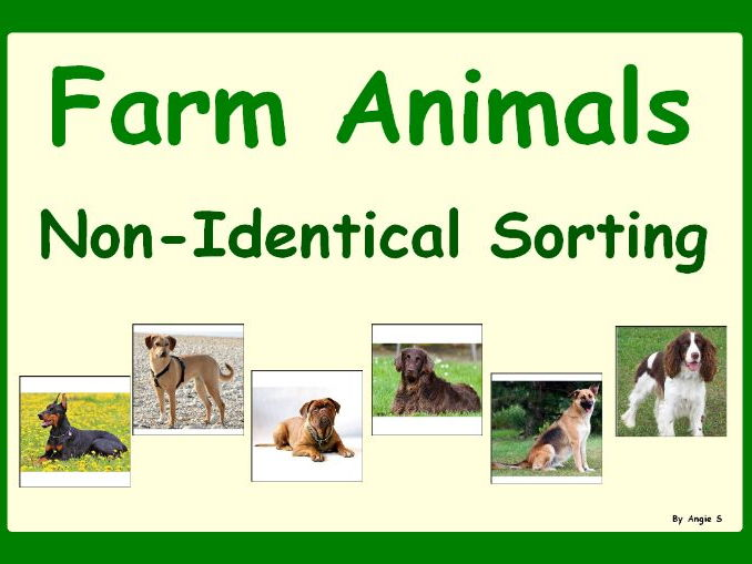 Farm Animals Non Identical Sorting Activity for Early Intervention