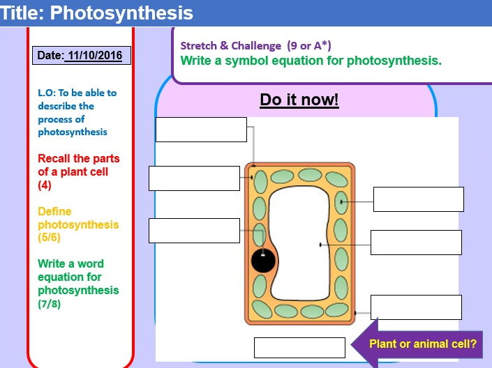 Photosynthesis Lesson By Mc1r Teaching Resources