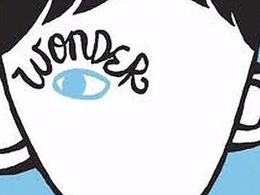 Wonder: Year 7 Full Scheme of Work