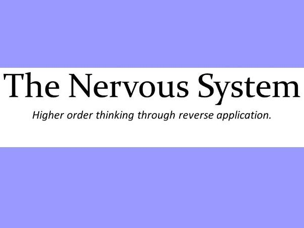 The Nervous System -Reverse Application