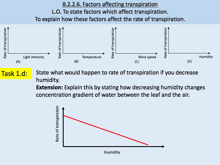 Transpiration / Factors Affecting Transpiration
