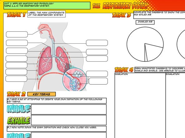 NEW Edexcel GCSE PE Unit 1 – Topic 1.2 – Respiratory System L1 – Intro  Main task only