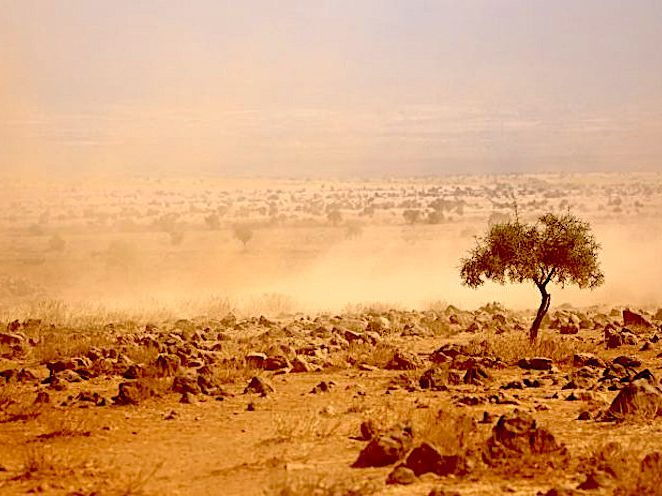 The Impacts of Climate Change in Africa