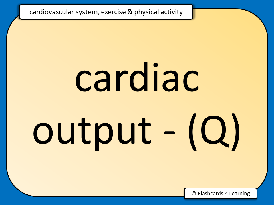 physical education circulatory system revision Worksheet - circulatory system  year 10 physical education name: circulatory system select select  genetics test revision semester 2 uploaded by.