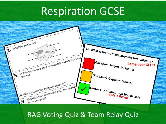 Respiration GCSE Team Relay Quiz and RAG Class Voting Quiz
