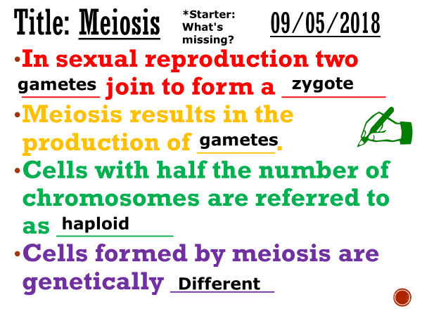 Meiosis - Complete lesson (AS/A2)