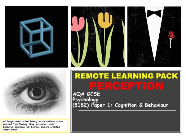AQA GCSE Psychology: PERCEPTION, Remote Learning Pack, Set #3