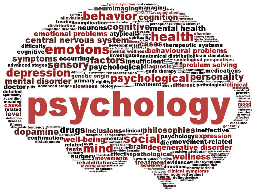 Cambridge AS and A level 9990 and 9698 Psychology Topic wise