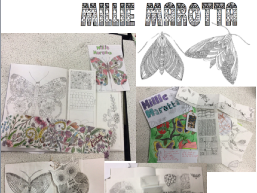 Millie Marotta y8 Lessons Zentangle Drawing