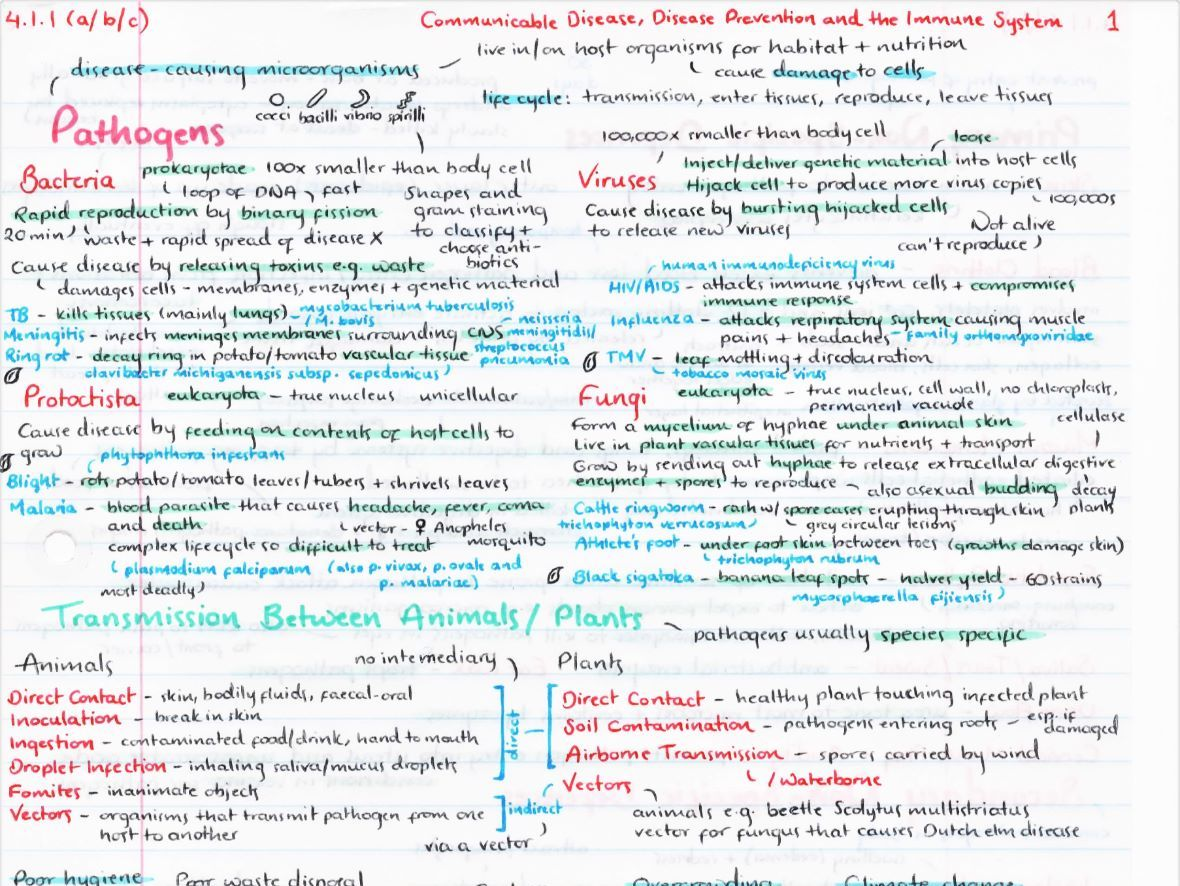 OCR A Level Biology Module 4 Revision Posters