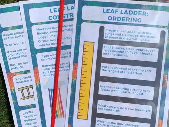 Outdoor maths activities Fragonwood Leaf Ladder Ordering KS2