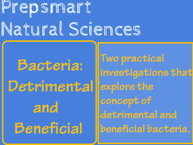Bacteria: Detrimental and Beneficial