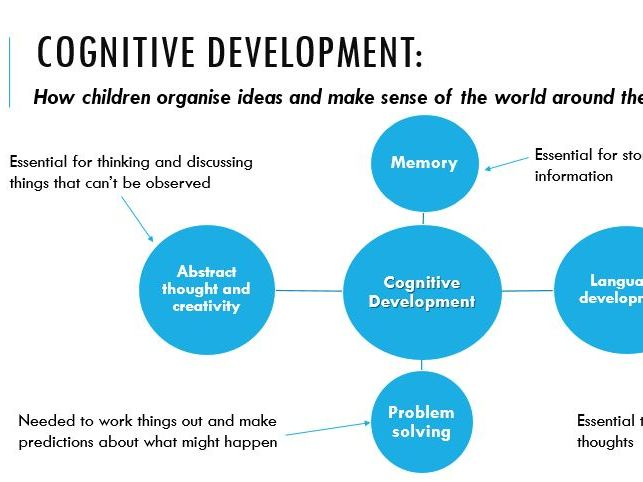 Cognitive Development lesson (CPLD L3 Unit 1)