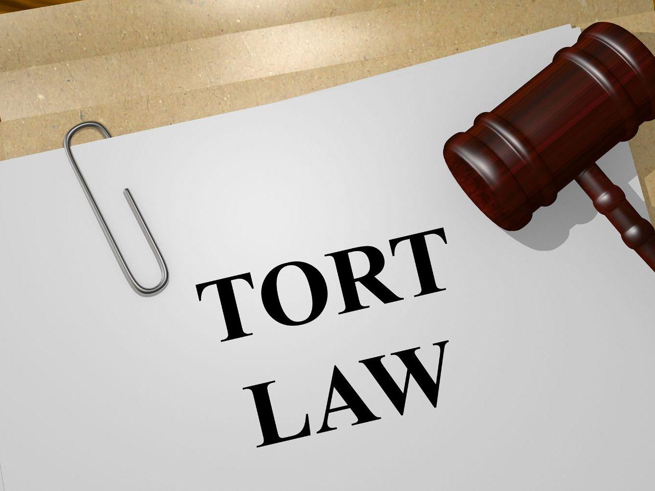 Tort Law Bundle (9 items)