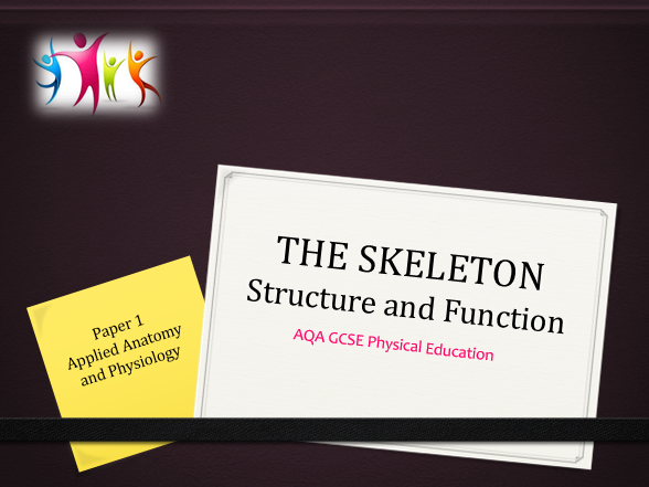 AQA GCSE Physical Education Structure and Function of the Skeletal System