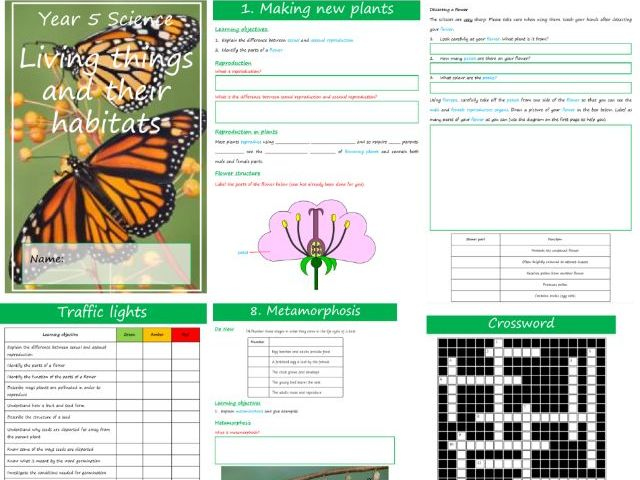 Living things and their habitat workbook and lessons (Year 5)