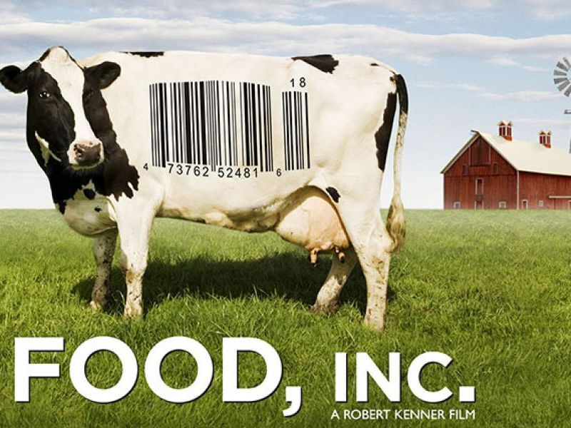 Comprehension questions Documentary Food Inc.