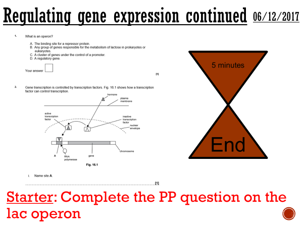 Regulating gene expression - complete lesson (A2)