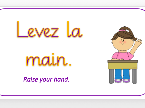 French Classroom Language Posters