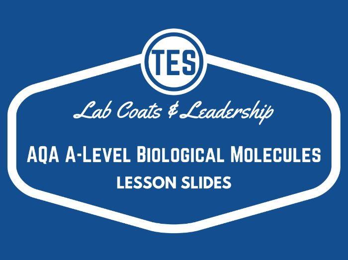Testing for Sugars Lesson Slides (AQA Biology)