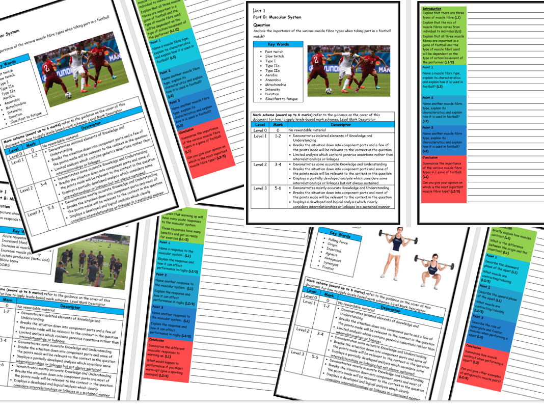 Burnsinwigans Shop Teaching Resources Tes Electricity Quizzes And Revision Notes For Key Stage 3 Gcse Two 7 Long Answer Question Structure Strips On The Muscular System Btec Sport Level