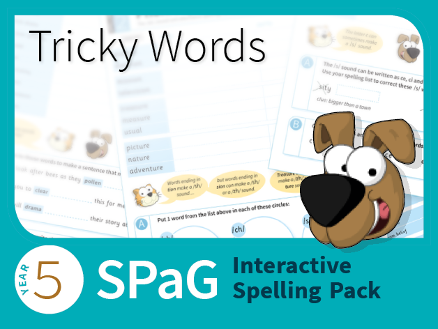 Year 5 SPaG Interactive Spelling Pack - Tricky Words