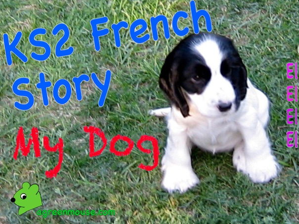 KS2 French Story, Video + Worksheets - My Dog
