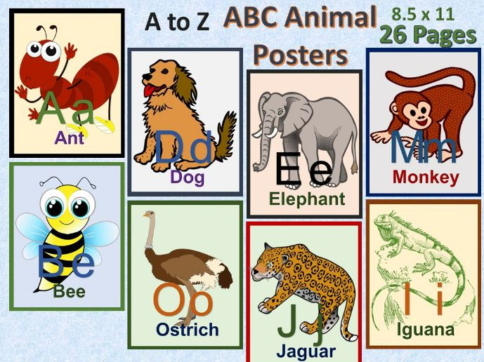 ABC Animals Posters A-Z