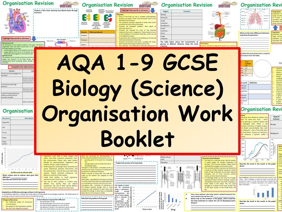AQA 1-9 GCSE Biology(Science) Biological Organisation Revision Workbook
