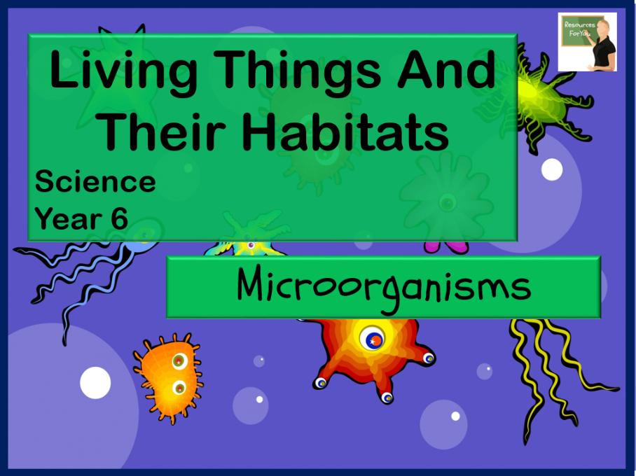 Science Microorganisms Year 6
