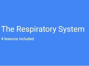 A-Level PE (OCR) The Respiratory System (PowerPoint and Full Resources)