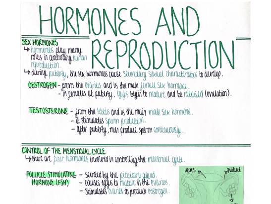 Hormones (Homeostasis & Response) Revision Poster [AQA GCSE Biology Double and Triple 9-1]