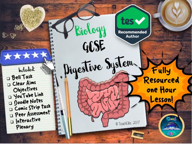 The Digestive System The Digestive System Gcse By Teachelite