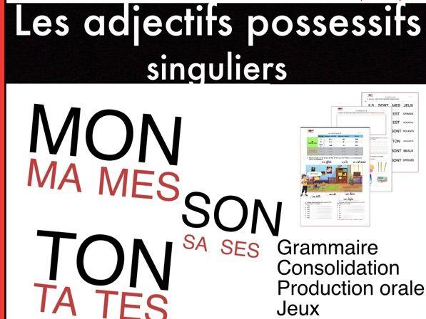 Les adjectifs possessifs (sing.). FLÉ