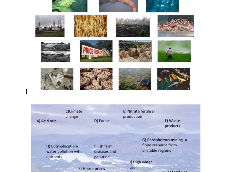 Environmental Impacts of Animal Consumption/ Meat/ Livestock