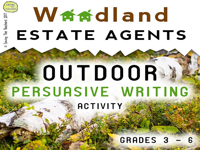 Persuasive Writing Activity: Estate Agents