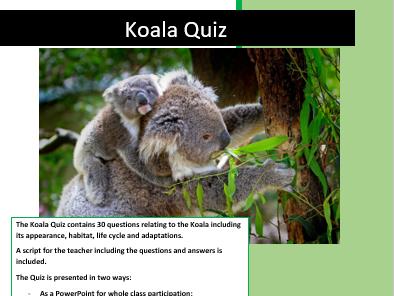 Science: Living things and their Habitats: Koala Quiz