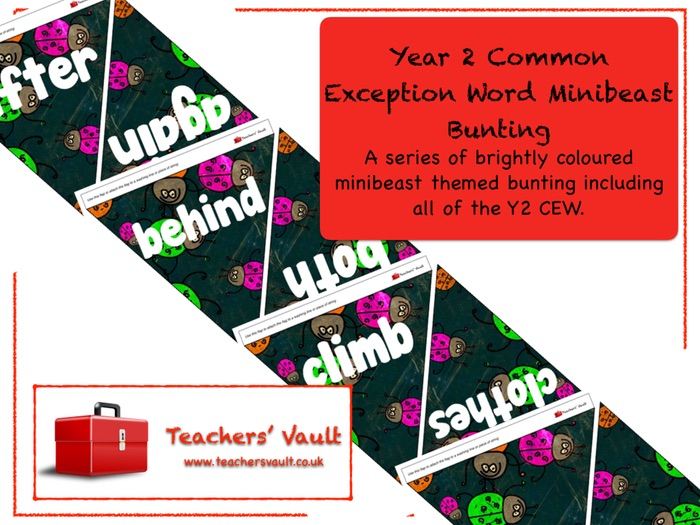 Year 2 Common Exception Words Minibeast Bunting