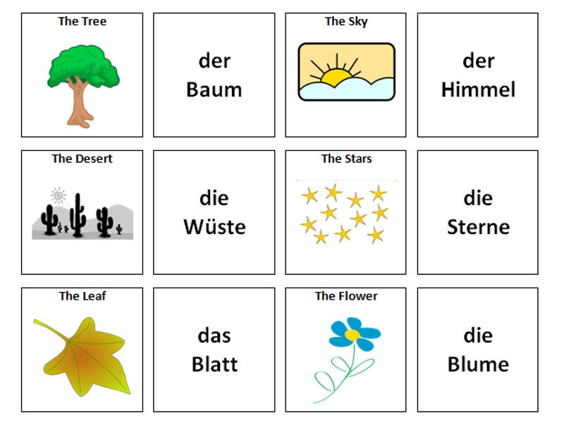 Nature: German Vocabulary Card Sort