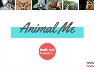 Animal Me: Careers/ PSHE. Personality & Strengths