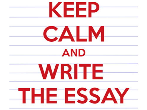 A-Level/College/University - Primary Teaching Essay/Assignment - Mathematics