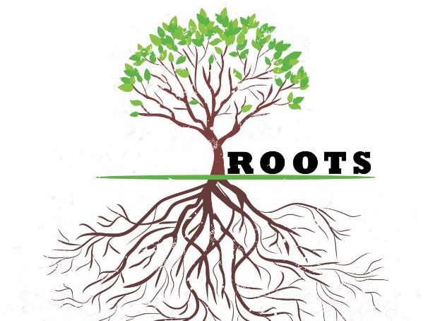 🌳Word Roots 🌳Etymology for Improving Understanding &  Cross-Curricular Links