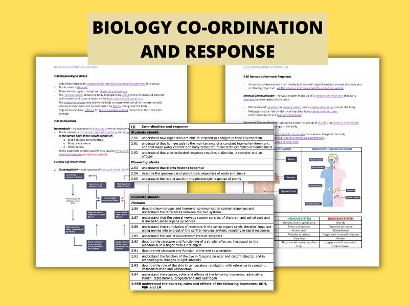 Co-ordination & Response | (I)GCSE Biology Detailed Notes