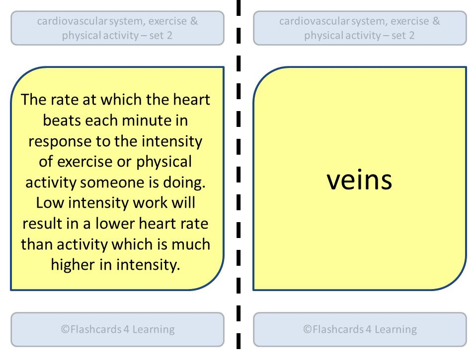 GCSE PE Dominoes: Cardiovascular System (Set 2)