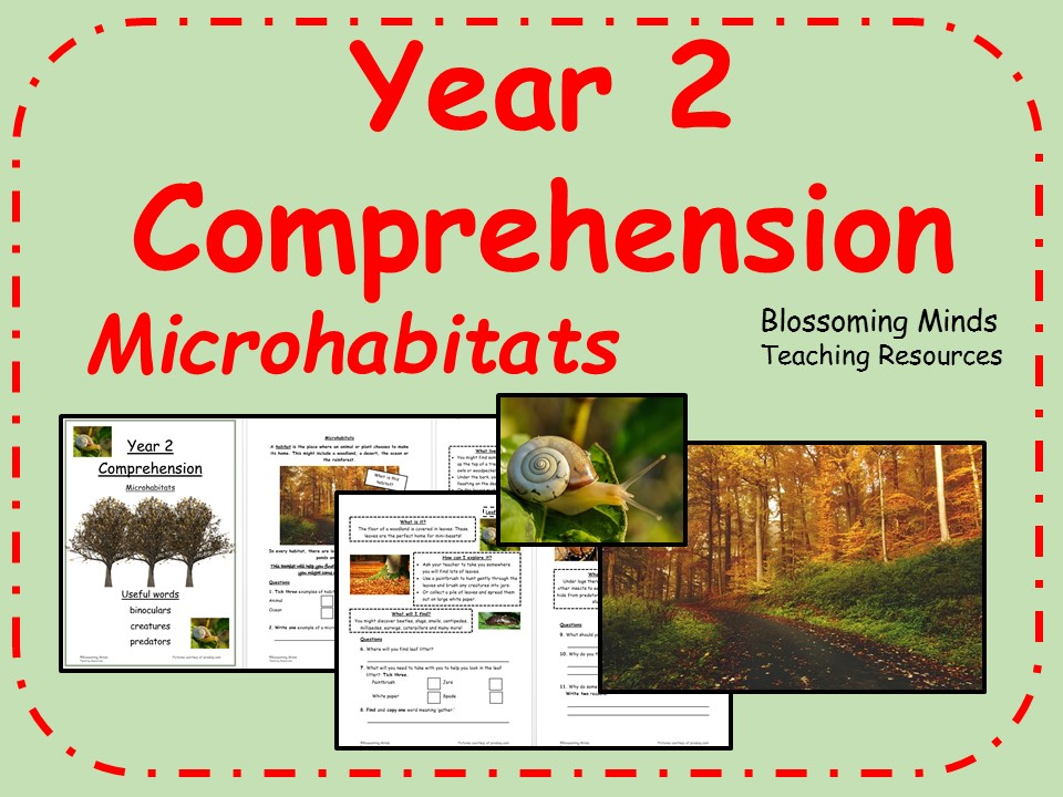 Year 2 Reading Comprehension - Microhabitats