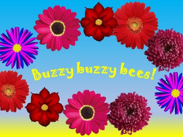 Buzzy buzzy bees! Counting song, adding one more