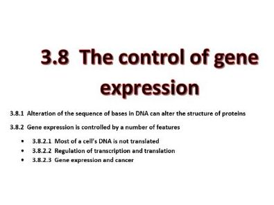 3.8 The control of gene expression