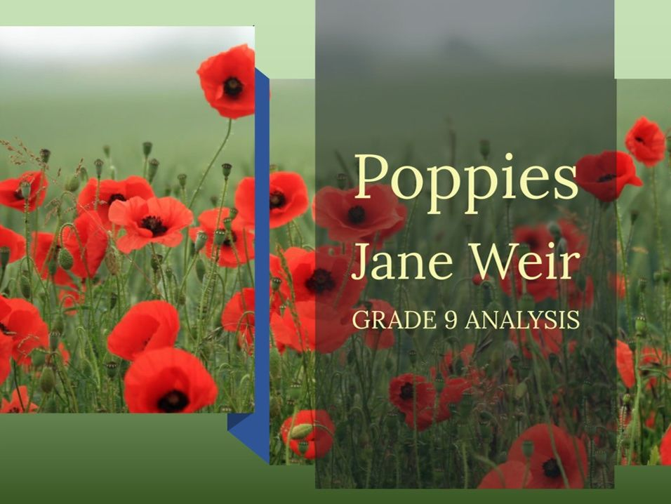 Poppies – Grade 9 quotation analysis & model answers