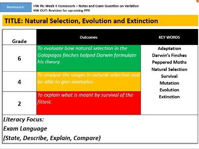 Natural Selection, Evolution and Extinction
